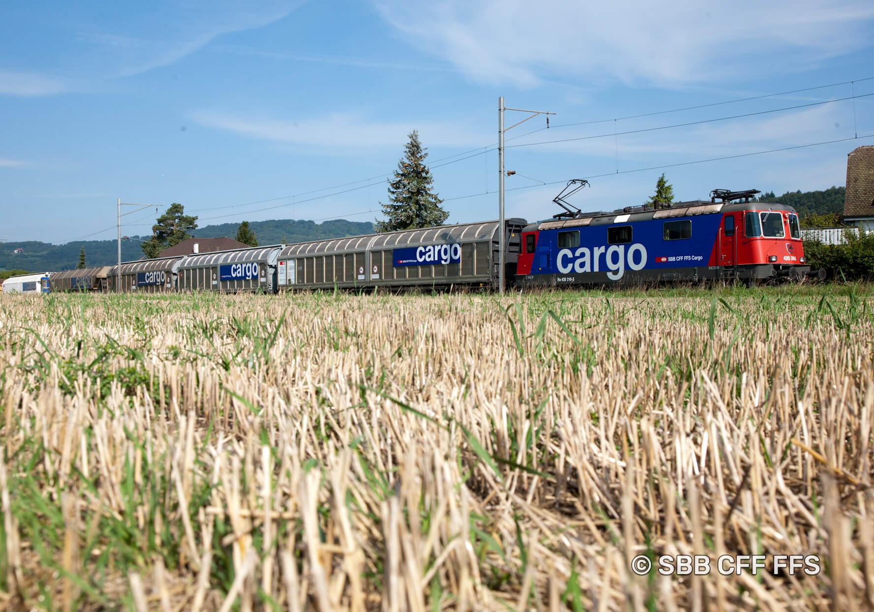 FORS Ökologischer Transport SBB Cargo